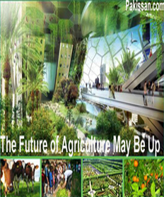 The Future of Agriculture May Be Up :-Pakissan.com