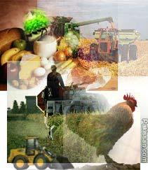 Model Farming
