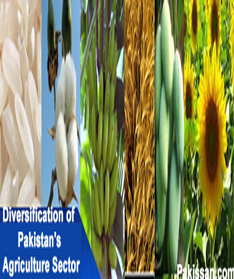 Diversification of Pakistan's Agriculture Sector :-Pakissan.com