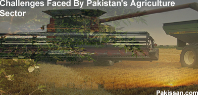 Challenges Faced By Pakistan's Agriculture Sector:-Pakissan.com
